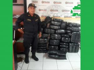 Tingo María: Policía interviene más de 157 kilos de hoja de coca ilegal