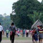 Impulsan pago de multas de infractores forestales a través de conservación de bosques