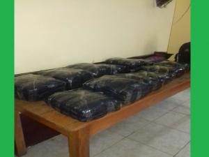 Leoncio Prado: Policía decomisó más 230 kilos de coca ilegal