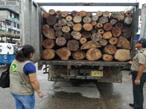 Leoncio Prado: Policía detiene a sujetos por tráfico de madera