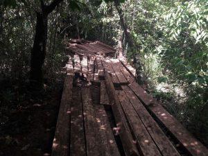 Leoncio Prado: Policía intervino cuatro mil pies tablares de madera