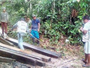 San Martín: Decomisan más de 3 600 pies tablares de madera ilegal