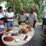 Promueven mejora en la calidad del cacao y chocolate sanmartinenses