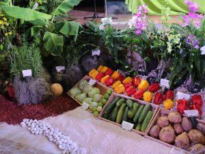 San Martín: Dirección Regional de Agricultura celebra 48 años de labores