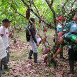 Unos 95 cacaoteros ucayalinos iniciaron formación como agentes tecnológicos