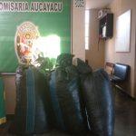 Huánuco: Decomisan cerca de 500 kilos de hoja de coca