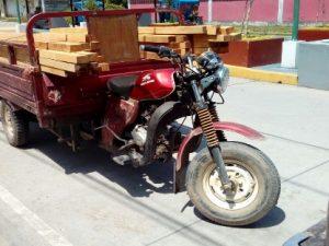 Leoncio Prado: Incautan más de 200 pies tablares de madera ilegal