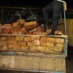 Leoncio Prado: Incautan más de 9 000 pies tablares de madera