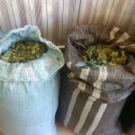 Leoncio Prado: Policía decomisó cargamento ilegal de hoja de coca