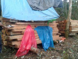 Monzón: Incautan 3 500 pies tablares de madera