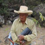 Financiarán nueve proyectos de gestión forestal en la Amazonía
