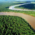 Contraloría respalda conservación forestal en Ucayali
