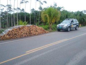 Intervienen 5 000 pies tablares en Leoncio Prado