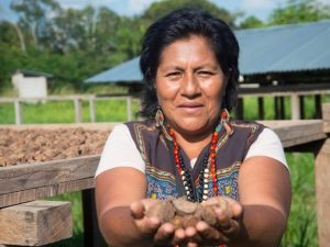 Comunidad indígena exige que se cumpla sentencia que defiende su territorio de mineros ilegales