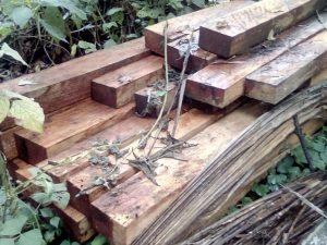 Leoncio Prado: Policía incauta madera ilegal