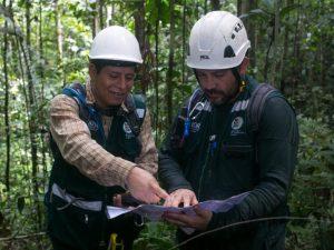 Loreto inicia nuevo procedimiento para concesiones forestales