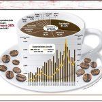 San Martín es la región que encabeza producción cafetera nacional