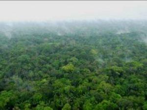 Putumayo: Comunidades apoyan creación de PN del Yaguas