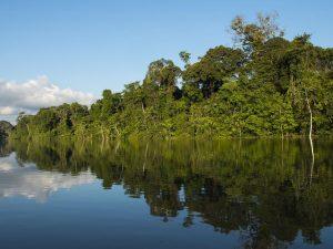 Aseguran que consulta previa en Zona Reservada Yaguas respeta derechos de comunidades