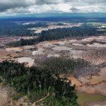 Corroboran deforestación en Madre de Dios