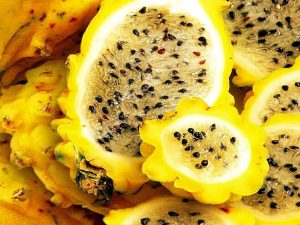 Destacan beneficios a la salud gracias al consumo de frutos amazónicos