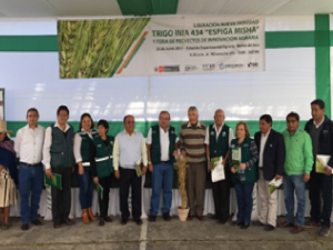 Más de 1 000 productores participan de liberación de nueva variedad de trigo