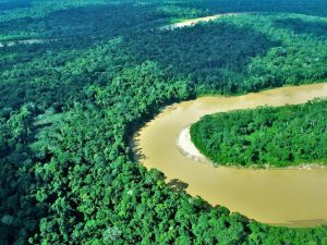 Programa Bosques beneficia a 69 comunidades nativas para reducir deforestación