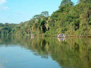 Temperaturas máximas en la selva superarían los 33 grados