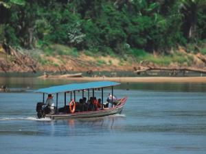 Conoce las rutas cortas al Manu, Pacaya Samiria y Tambopata