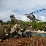 Erradicación de hoja de coca en Ucayali y Huánuco superó las 10 mil hectáreas