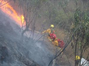 Guardaparques controlan incendio forestal en Santuario Histórico de Machupicchu