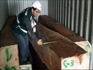 Intervienen 29 contenedores de madera en terminal portuario del Callao