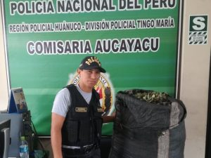 Leoncio Prado: Decomisan cerca de 200 kilos de hoja de coca