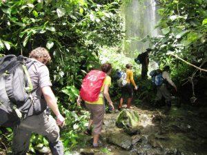 Relanzan visitas turísticas al PN Tingo María