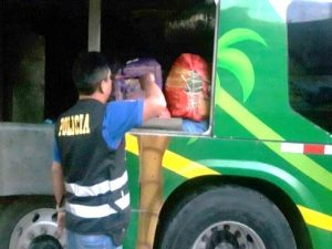 Tingo María: Incautan cargamento de marihuana en empresa de transportes