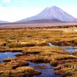 Arequipa: RN de Salinas y Aguada Blanca abastece de agua a más de un millón de peruanos