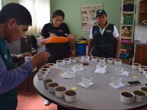 Cafetaleros del Vraem avanzan en la I Competencia Taza de Excelencia 2017
