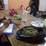 Decomisan marihuana y alcaloide de cocaína en viviendas de Tingo María