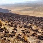 Evaluaron daños de incendio forestal en Santuario Histórico de Chacamarca
