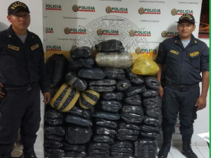Huánuco: Decomisan 190 kilos de hoja de coca