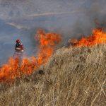 Cusco: Incendio forestal registrado en distrito de Santiago fue extinguido