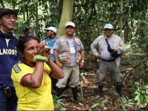 Loreto: Capacitan a 14 comunidades nativas en manejo forestal comunitario