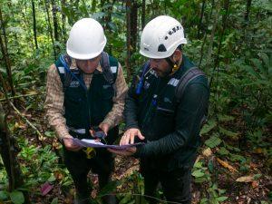 San Martín instalará primera mesa de control y vigilancia forestal y de fauna silvestre