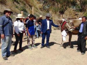Segunda Feria Agropecuaria de Cajacay se realizó exitosamente