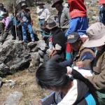 Sernanp busca disminuir sobrepastoreo en Parque Nacional Huascarán