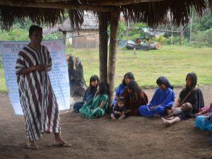 Vigilancia indígena para la protección de la Amazonía y la prevención de desastres naturales