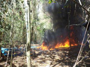 Vraem: Destruyen más de diez mil kilos de hoja de coca macerada en Anco