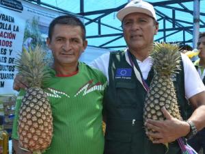 Vraem: Piñas de reconversión productiva se lucen en feria agropecuaria