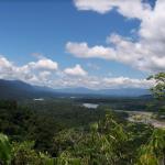 Avanza implementación de Plan de Inversión Forestal para reducir deforestación