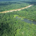 Madre de Dios registró 7.9 millones de hectáreas de bosques húmedos amazónicos al 2016